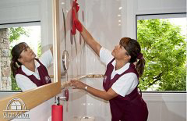 Franquicia Clean & Iron Service